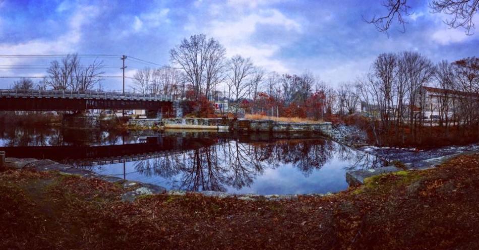 anthony bridge